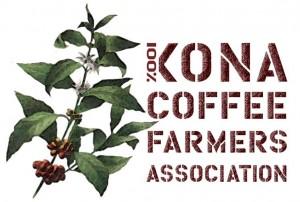KCFA horiz logo 1.9 Xi